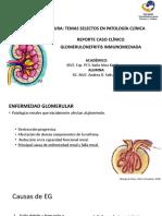 glomerulonefritis inmunomediada