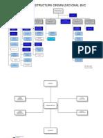 organizacion bvc (1)