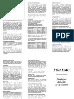 Flint-Electric-Membership-Corp-Employee-Benefits-