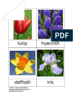 Flowers 3-Part Cards