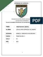 TAREA N° 03 TRIBUTACION LABORAL  (LIDIA ELVIRA ESPINOZA VILLANERA)