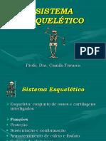 Aula_2-_SISTEMA_ESQUELÉTICO