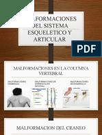 MALFORMACIONES DEL SISTEMA ESQUELETICO Y ARTICULAR