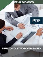 Bibliografia Direito Coletivo Do Trabalho