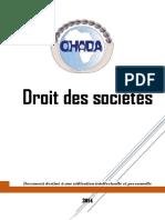 Copy of Droit Des Sociétés L1 Droit