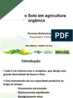 Manejo Solo Agricultura Organica Ronessa Souza