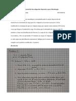 CORTEZ FLORES DIEGO - II Examen Parcial de Investigación Operativa Para Metalurgia