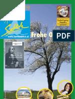 Seeblick Ausgabe 2/2011 - Nr.089, Jg. 19 | sb2011-02_a089_0116