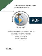 File Zilla Consulta 2011