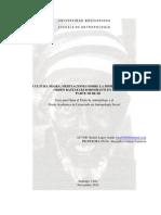 Parte III. Tesis Cultura Negra; Meditaciones sobre la Dimensión Ritual del Orden Rastafari Boboshanti en Chile (Rafael Lagos)
