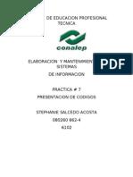 P7 PINTO