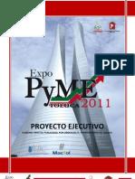 proyecto ejecutivo EXPO-PyME TOLUCA.docx