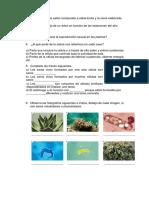 preguntas fotosintesis, reproduccion de las plantas