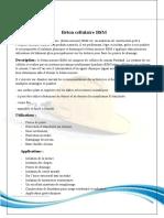 B.S.M béton cellulaire - Copie