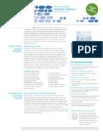 Vitalizer PDF