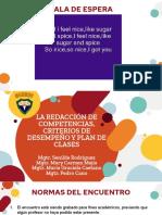 Competencia, criterio de desempeño y plan de clases.def.pptx