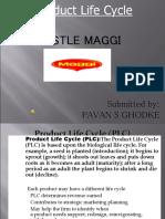 Product-Life-Cycle-of-Maggi