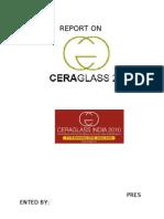 REPORT ON CERAGLASS2010