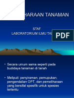 PEMELIHARAAN TANAMAN