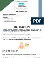 TBC-SEMINARIO