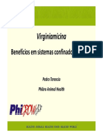 PedroTerencio