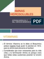 Vit Hidrosolubles Medicina 2011 PDF