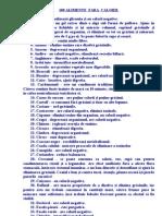 4. 100 Alimente Fara Calorii. New Document Microsoft Word