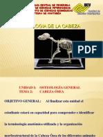 osteologia 1ra  CLASE