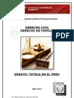 ENSAYO SOBRE LA TUTELA EN EL PERU