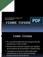 SALMONELOSIS Y FIEBRE TIFOIDEA