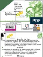 Presentación_Resultados_VI-089-10_25Nov2010_v.1