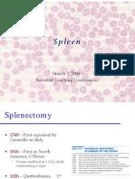 spleen 2