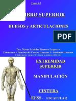 4.1 Miembro Superior Huesos y Articulaciones