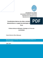 Relatório_CarlaMarques