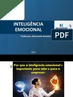 AULA 3 Inteligência Emocional