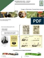 Fungos e Oomicetos - Características Gerais