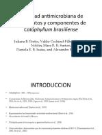 Actividad antimicrobiana de fragmentos y componentes de Calophyllum