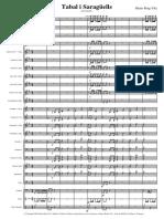 Tabal i Saragüells PDF