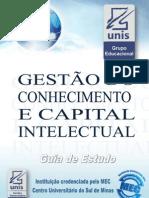 Gestão do Conhecimento e Capital Intelectual