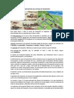 documento ingenieria de transportes