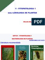 GFP101 Bacteriologia de Plantas 2020 1 Histórico e Morfologia Celular Bacteriana