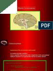 Neurological Symptomatology Part II