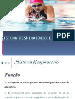Sistema Respiratorio e o Exercicio 2021