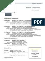 curriculum-vitae-modelo1-oscuro
