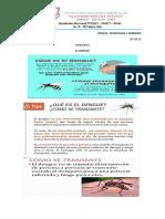 CIENCIAS    FICHA N°11        EL  DENGUE                         07-10-21