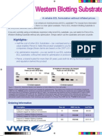 16029 Pierce ECL Western Blotting Substrate Flyer
