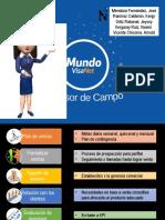 Visa Asesor de Campo