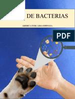 Atlas de bacterias