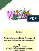 RDP-UDP Protein Seminar