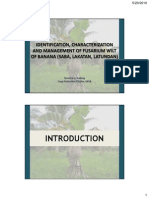 Identification, characterization and management of Fusarium wilt of banana (Saba, Lakatan, Latundan)